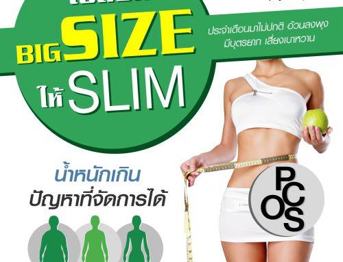เปลี่ยน BIG SIZE ให้ SLIM